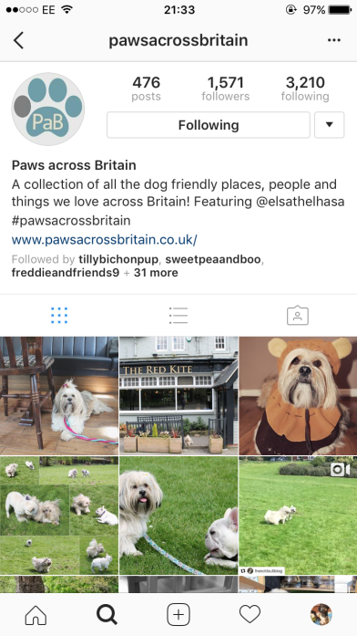 the adventures of Elsa on @pawsacrossbritain